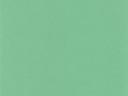 Зеленый фоновый